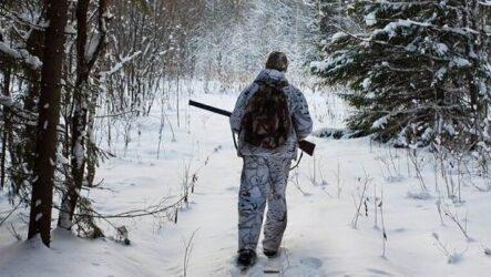 Охота зимой на разных зверей и её особенности