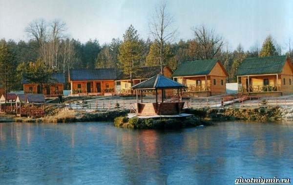 15-лучших-рыболовных-мест-в-Брянской-области-бесплатные-и-платные-10