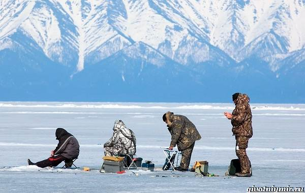 15-лучших-рыболовных-мест-в-Бурятии-Бесплатные-и-платные