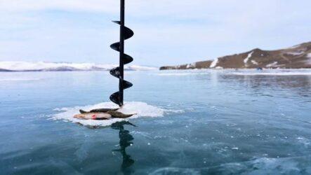 15 лучших рыболовных мест в Бурятии: бесплатные и платные