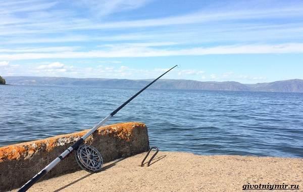 15-лучших-рыболовных-мест-в-Бурятии-Бесплатные-и-платные-2