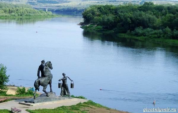 15-лучших-рыболовных-мест-в-Ростовской-области-Бесплатные-и-платные-3