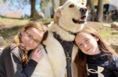 История о собаке, которую удалось спасти от эвтаназии