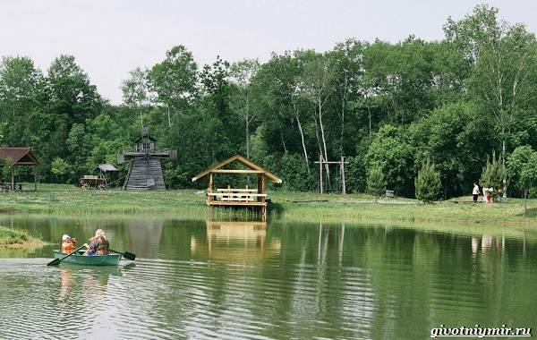 15-лучших-рыболовных-мест-в-Хабаровском-крае-бесплатные-и-платные-11