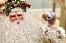 История о мужчине, который не слишком любил птиц, пока не встретил пернатую подругу