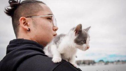 История о бывшем бездомном котенке, который любит сидеть на плече у хозяина