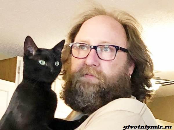 История-о-спасенном-коте-который-дарит-своему-хозяину-спокойствие-1